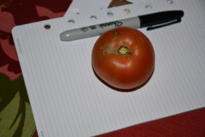 My last tomato from my potted garden. Picked in December.