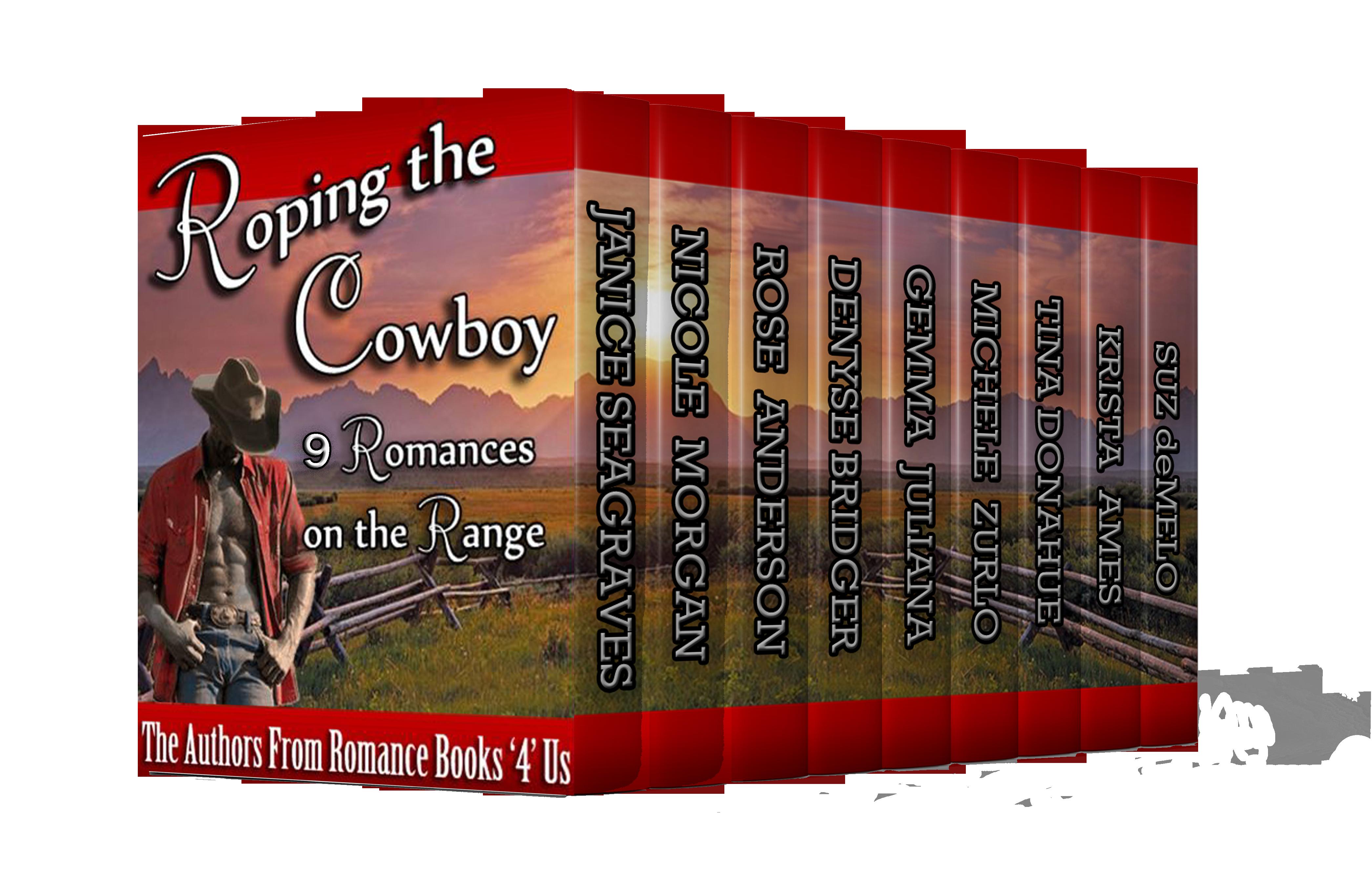 rb4u-cowboy-3d
